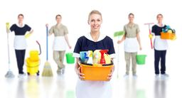 Thumb domestic cleaning service