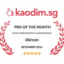 Thumb pro of the month kaodim